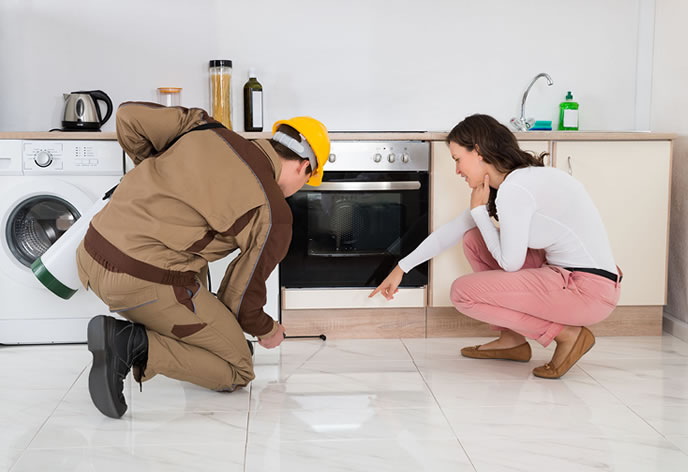 pest control Somerset West